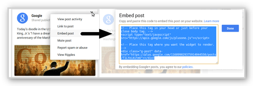Embed-Google-plus