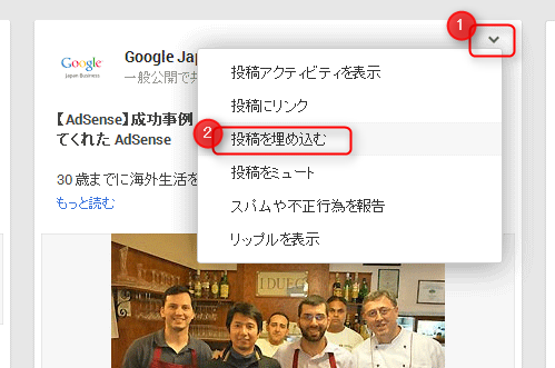 Embed-Google-plus1