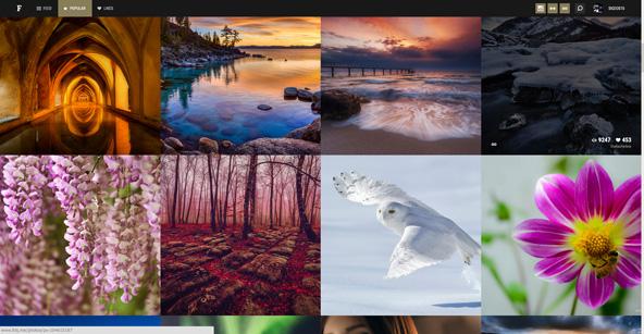 Popular画面では各サービスで人気の写真を表示。